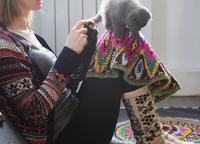 Woman sitting on floor crocheting with kitten balancing on her knee 11015305373| 写真素材・ストックフォト・画像・イラスト素材|アマナイメージズ