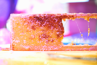 Fresh honeycomb on shed bench 11015305807| 写真素材・ストックフォト・画像・イラスト素材|アマナイメージズ