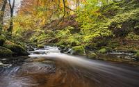 Moness Burn, Birks o' Aberfeldy, Perthshire, Scotland 11015306857| 写真素材・ストックフォト・画像・イラスト素材|アマナイメージズ