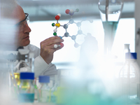 Researcher using a molecular model to understand a chemical formula in a laboratory 11015307596| 写真素材・ストックフォト・画像・イラスト素材|アマナイメージズ
