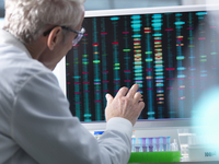 DNA Research, Scientist comparing DNA results on a computer screen in the laboratory 11015307599| 写真素材・ストックフォト・画像・イラスト素材|アマナイメージズ