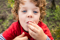 Portrait of boy eating grapes in vineyard