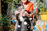 Senior woman with pet cat in garden, close-up of cat