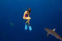 Underwater view of woman snorkeling with sea life, Oahu, Hawaii, USA 11015310752  写真素材・ストックフォト・画像・イラスト素材 アマナイメージズ