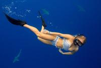 Underwater view of woman snorkeling with sea life, Oahu, Hawaii, USA 11015310753  写真素材・ストックフォト・画像・イラスト素材 アマナイメージズ