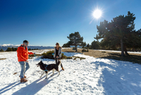 Couple with dog in snow covered landscape 11015313863| 写真素材・ストックフォト・画像・イラスト素材|アマナイメージズ