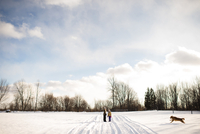 Children on snow-covered path, calling their golden retriever, Lakefield, Ontario, Canada 11015314109  写真素材・ストックフォト・画像・イラスト素材 アマナイメージズ