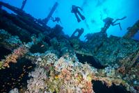 Scuba divers investigating coral covered shipwreck, Red Sea, Marsa Alam, Egypt 11015314297| 写真素材・ストックフォト・画像・イラスト素材|アマナイメージズ
