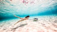 Female free diver swimming with stingray near seabed 11015314424| 写真素材・ストックフォト・画像・イラスト素材|アマナイメージズ