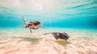 Female free diver swimming with stingray on seabed 11015314448| 写真素材・ストックフォト・画像・イラスト素材|アマナイメージズ