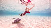 Female free diver swimming near stingray on seabed 11015314449| 写真素材・ストックフォト・画像・イラスト素材|アマナイメージズ