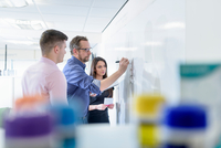 Pharmacists using whiteboard in meeting in pharmaceutical factory 11015314959| 写真素材・ストックフォト・画像・イラスト素材|アマナイメージズ