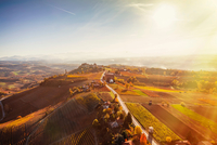 Sunlit view from hot air balloon of rolling landscape and autumn vineyards, Langhe, Piedmont, Italy 11015316415| 写真素材・ストックフォト・画像・イラスト素材|アマナイメージズ
