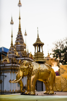 Golden elephant statue and spires of buddhist temple, Chiang Mai, Thailand 11015316757| 写真素材・ストックフォト・画像・イラスト素材|アマナイメージズ