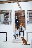 Portrait of male and female design team with dog on design studio stairs 11015318541| 写真素材・ストックフォト・画像・イラスト素材|アマナイメージズ