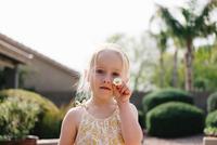 Portrait of girl holding daisy flower 11015320556| 写真素材・ストックフォト・画像・イラスト素材|アマナイメージズ