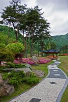 Paved path and garden in park 11015323606| 写真素材・ストックフォト・画像・イラスト素材|アマナイメージズ