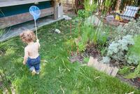 Boy playing with fishing net in garden 11015324505| 写真素材・ストックフォト・画像・イラスト素材|アマナイメージズ