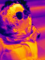 Thermal image of woman wearing sunglasses 11015325256| 写真素材・ストックフォト・画像・イラスト素材|アマナイメージズ