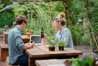 Couple with beer in garden using laptop 11015325599  写真素材・ストックフォト・画像・イラスト素材 アマナイメージズ