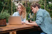 Couple with beer in garden using laptop 11015325605  写真素材・ストックフォト・画像・イラスト素材 アマナイメージズ