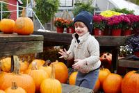 Boy selecting pumpkin in garden centre 11015325625| 写真素材・ストックフォト・画像・イラスト素材|アマナイメージズ