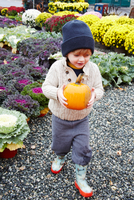 Boy carrying pumpkin in garden centre 11015325627| 写真素材・ストックフォト・画像・イラスト素材|アマナイメージズ