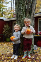 Portrait of boy and male toddler leaning against garden tree holding pumpkins 11015325630| 写真素材・ストックフォト・画像・イラスト素材|アマナイメージズ