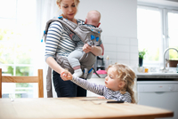 Young girl helping mother lay table, mother carrying baby boy in sling 11015327596| 写真素材・ストックフォト・画像・イラスト素材|アマナイメージズ