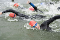 Men swimming in triathlon
