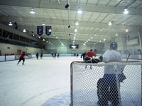 An ice hockey team training
