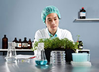 A lab technician staring intently at a plant in a laboratory 11016020614| 写真素材・ストックフォト・画像・イラスト素材|アマナイメージズ