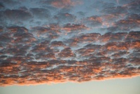 Many cumulus clouds covering the sky at dusk
