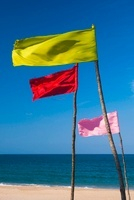 Colored flags flapping in the wind on a beach