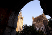 Exterior view of Seville Cathedral, including La Giralda fro