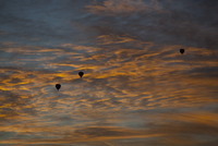 Three silhouetted hot air balloons against a dusk sky in Mel