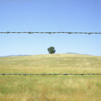 A barbed wire fence in front of a field under a blue sky and sunshine