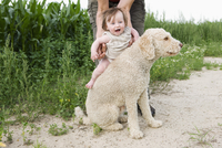 Woman holding baby girl on Portuguese Water Dog's back