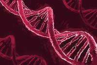 Illustrative image of DNA molecule