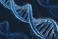 Illustrative image of blue DNA helix