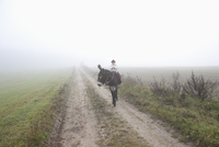 Girl riding donkey on road amidst field during foggy weather