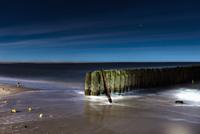 Groyne posts in sea