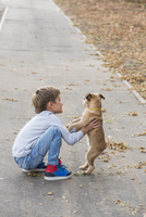 Boy playing with dog on footpath during autumn