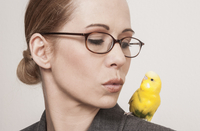 Beautiful woman looking at yellow budgerigar perching on shoulder against white background