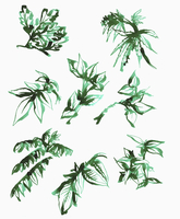 Illustration of various leaves on white background