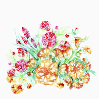 Illustration of flowers on white background