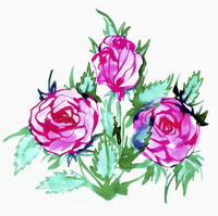Illustration of pink roses on white background