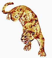 Illustration of cheetah against white background