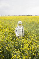 A person in a radiation protective suit standing in an oilseed rape field 11016030869| 写真素材・ストックフォト・画像・イラスト素材|アマナイメージズ
