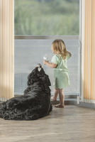 Rear view of girl standing by Border Collie at home
